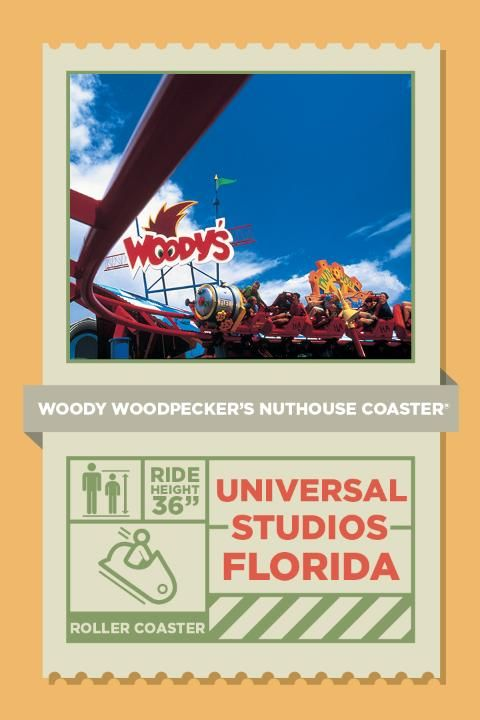 It's the nuttiest ride you've ever seen! Woody definitely proved he's got a few screws loose when he designed Woody Woodpecker's Nuthouse Coaster®, a kid-sized roller coaster that's still fun for all ages!