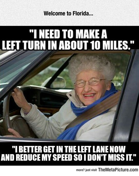 Fucking Old People Drivers, One Almost Killed Us The Other Day, Went  Straight Through A Stop Sign, No Attempt At Stopping. If They Canu0027t Read  The Signs, ...