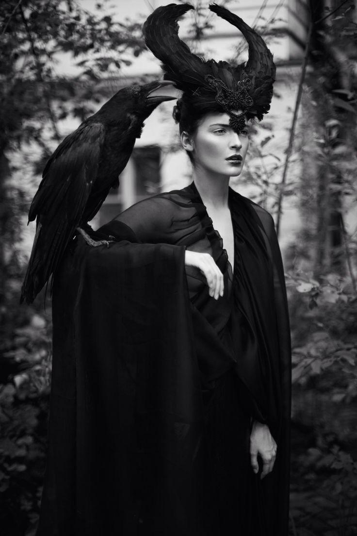 789 best Crows ~ Ravens ~ Black Birds ~ Birds that are Black ...