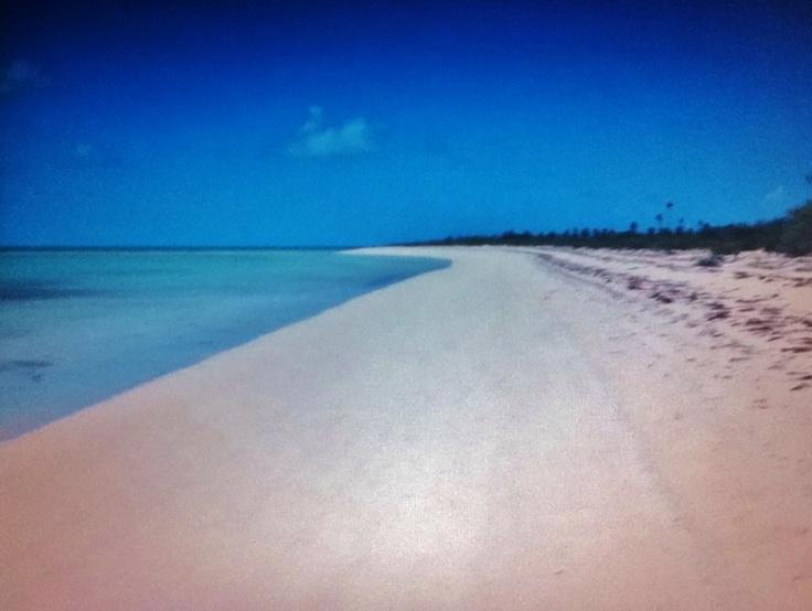 barbuda pink beaches - photo #16