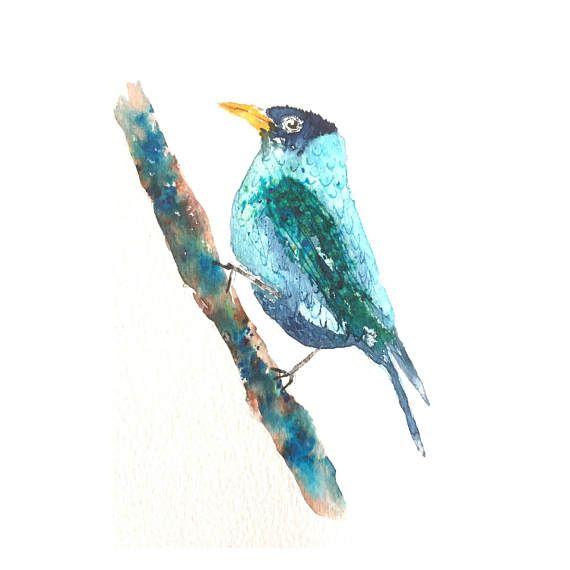 Teal bleu bird-vogel kunst exotic bird-colorful art-original