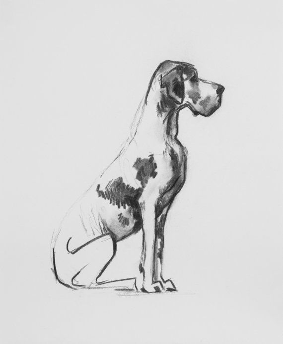 Great Dane  Moses by MegoryGregory on Etsy