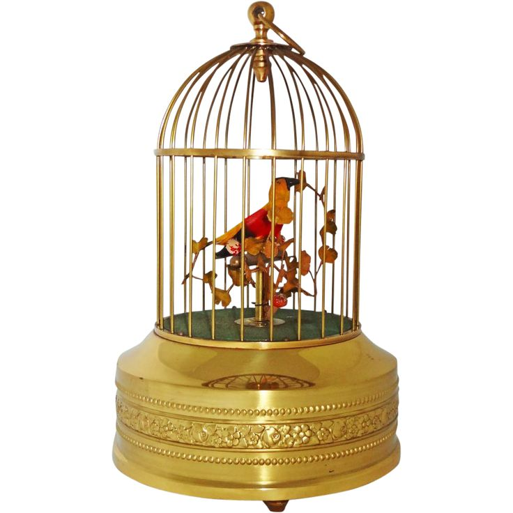 Singing Automaton Bird in Cage Music Box - 20th Century, Germany