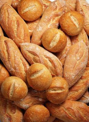 Explicar la fermentación del hongo a los estudiantes primarios   eHow en Español
