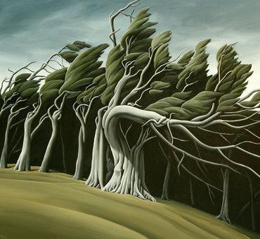 Gnarled Woods. Diana Adams, New Zealand.