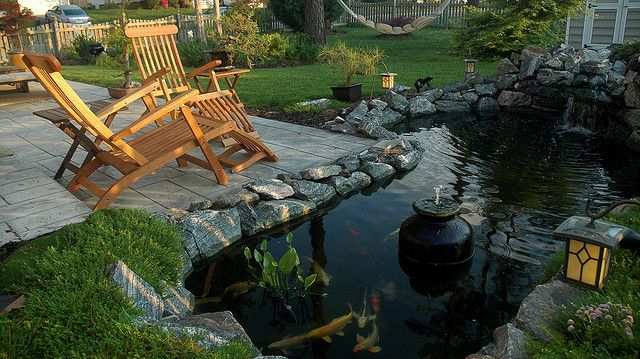 1000 images about koi ponds on pinterest for Concrete backyard pond