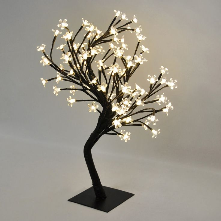 36 best Bonsai trees images on Pinterest | Bonsai trees, Tree lamp ...