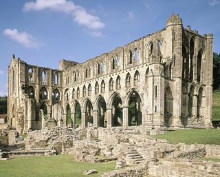 the dissolution of the monasteries essay