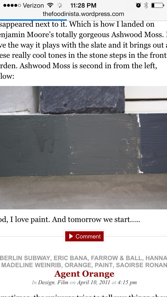 17 Best Images About Interior Paint On Pinterest Paint Colors Revere Pewter And Silver Foxes