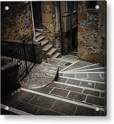 Stairs In Motion Acrylic Print by Cesare Bargiggia