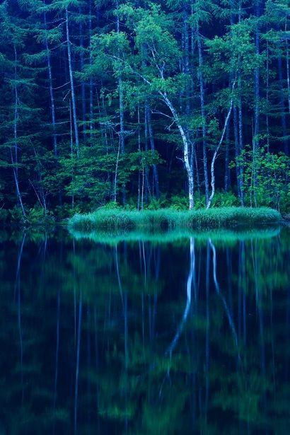 Mishaka pond, Nagano, Japan 御射鹿池 #緑 #Green