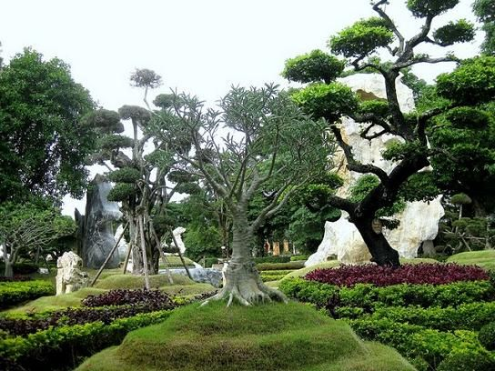 Bizarre Boulders, Trees and Shrubs at the Million Years Stone Park in Pattaya, Thailand