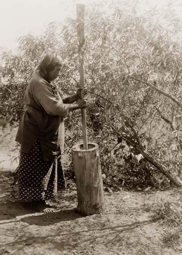 ~ Wichita woman using an old mortar and pestel.: Pestl 1927, Mortar And Pestl, American Indian, Old Pictures Of Wichita, Curtis Th Illustrations, Wichita Woman, Wichita Mortar, Photo, Native American
