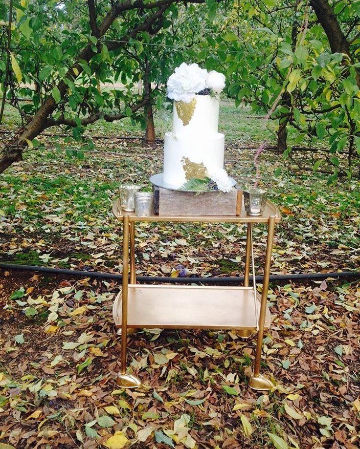 Autumn styled shoot at Raeburn Orchards.