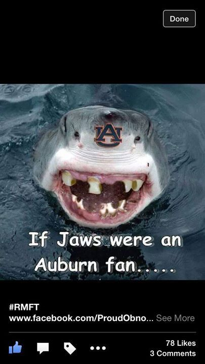ALABAMA FOOTBALL!  ROLL TIDE!  AUBURN SUCKS!  2014