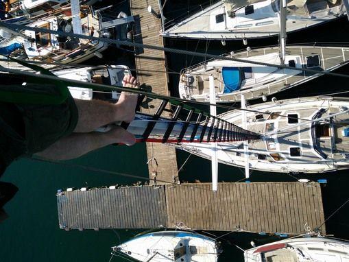 Mast Climber