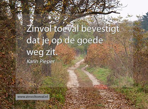 Image on Zinvol toeval  http://www.zinvoltoeval.nl/wp-content/uploads/2014/01/goedeweg.jpg