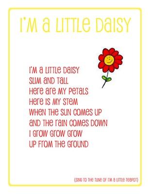 preschool song daisy - have students create melody, focusing on melodic interpretation of lyrics (grow, grow, grow... ascending)