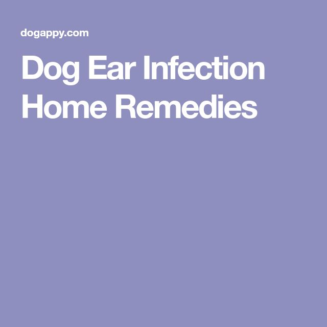 dog ear pain relief