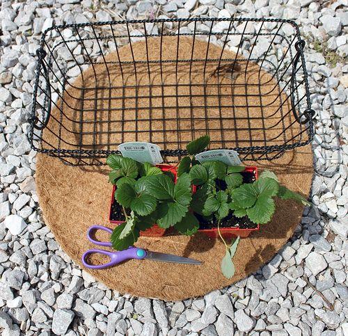 Best 20 Planter Liners Ideas On Pinterest Planters Bank