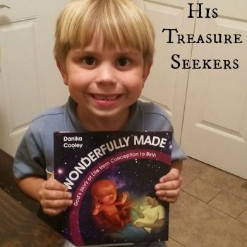 """""""Wonderfully Made is more than just a book of information about how babies develop in utero; it is a declaration of praise to the exquisite artistry of our Creator."""" ~ Deanna Jasper"""