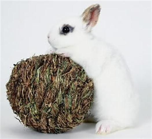 Marshall Pet Peters Woven Grass Play Ball For Small Animals