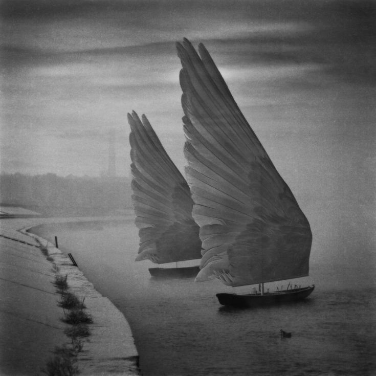 ARTFINDER: Wings of Imagination by Dariusz Klimczak - Montage on the basis my own photos.