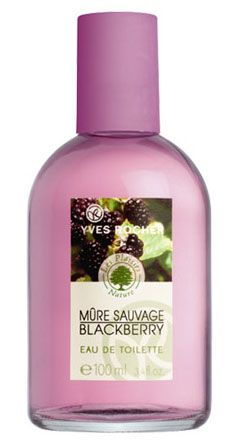 Mure Sauvage Yves Rocher perfume - a fragrance for women