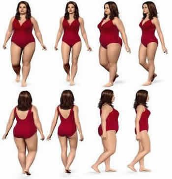 Loss Weight with Few Guidelines