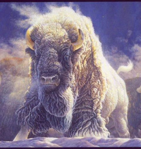 Cows run away from the storm while the buffalo charges toward it – and gets through it quicker.  Whenever I'm confronted with a tough challenge, I do not prolong the torment, I become the buffalo.