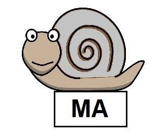 Ślimakowe śliwki (MA) | Logotorpeda