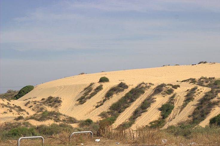 Sand dunes in Holon
