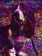 """New artwork for sale! - """" Basset Hound Dog Pet  by PixBreak Art """" - http://ift.tt/2ujyQdU"""