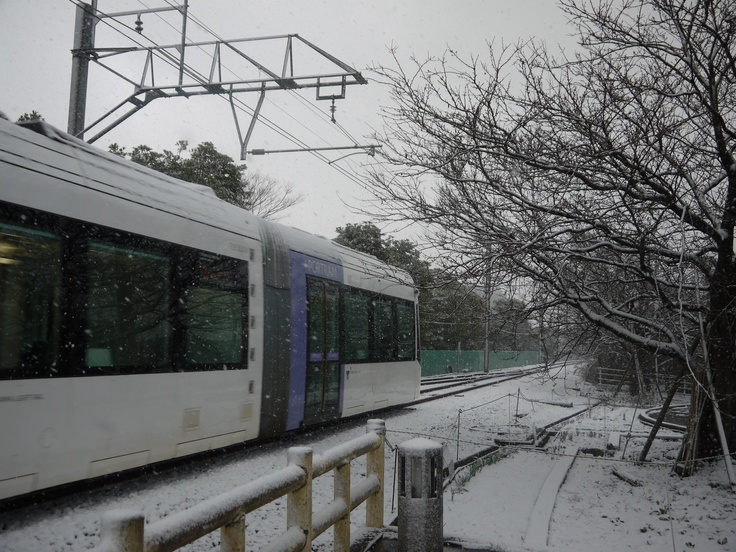 Toyama Right Rail running near the Iwasehama station with falling snow.