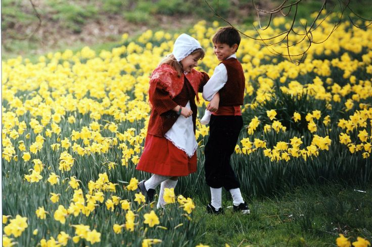A Welsh boy and girl dancing in a field of daffodils.