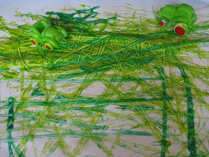 Where is the Green Sheep Activities 5