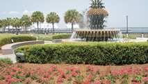 Hilton Garden Inn Charleston Waterfront/Downtown Hotel, SC - Waterfront Fountain