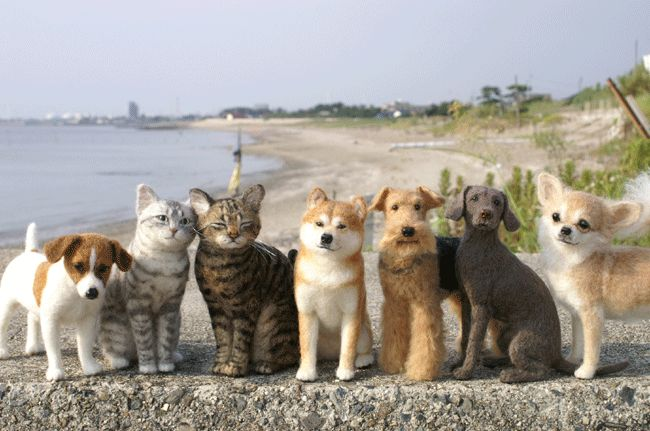 These Needle Felt Cats and Dogs are just amazing and look so real
