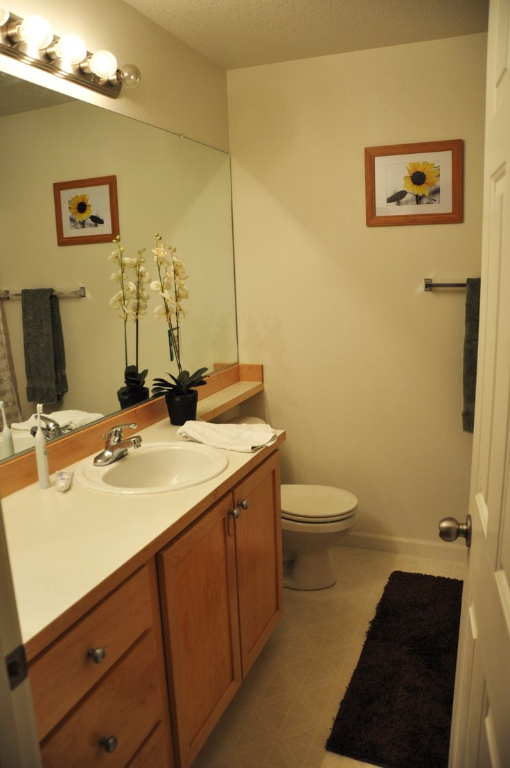 Bathroom Frameless Mirrors