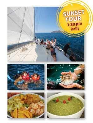 marlin del rey costa rica in tamarindo, flamingo and playas del coco