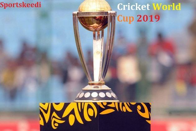 Pin En World Cup Trophy