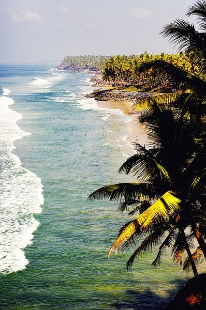 Varkala Beach, also known as Papanasam beach is a beach in Varkala, Thiruvananthapuram, Kerala, India, along the Arabian Sea