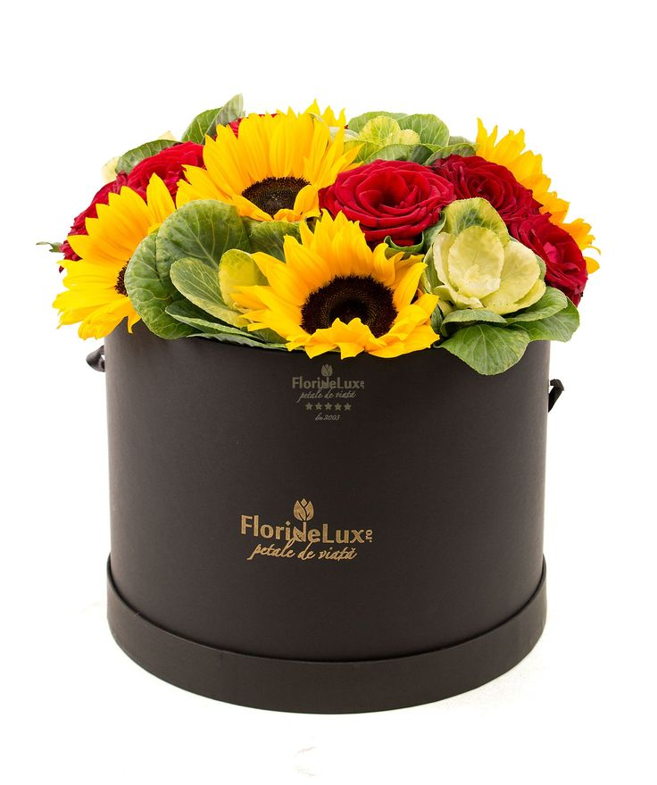 Box with sunflower and roses, an amazing gift that just keeps on giving. Amaze your loved ones in Romania with this elegant box, filled with roses, sunflowers and brassica. The box is 25 cm X 20 cm and is delivered with round lid and satin ribbon handle.