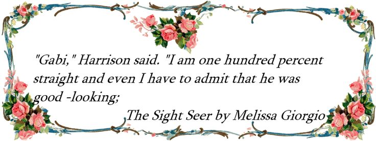 The Sight Seer by Melissa Giorgio