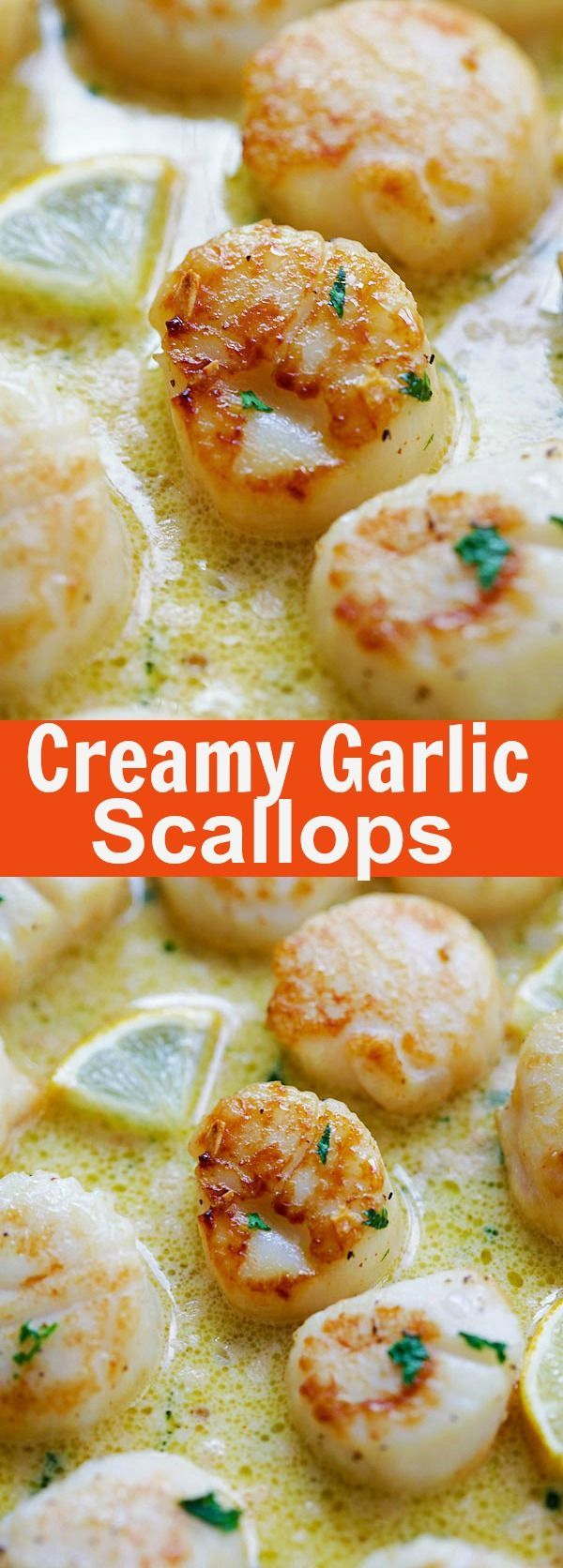 Creamy Garlic Scallops – easiest, creamiest and best scallop recipe ever. Takes only 15 mins, better than restaurants and much cheaper
