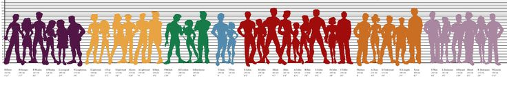 character heights for characters of Harry Potter, The Mortal Instruments, The Hunger Games, Divergent, Twilight, Percy Jackson & The Olympians, and The Caster Chronicles.