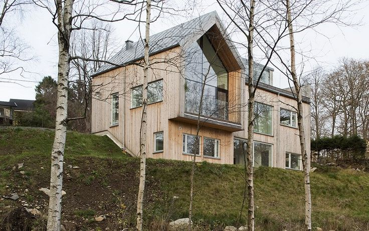 moderne-holzfassade-haus-laerche-kjellgren-kaminsky-architecture