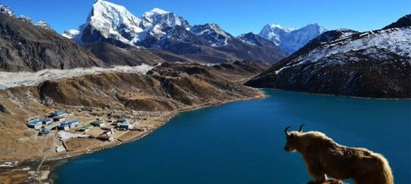 RT Gorkha Adventure: Dramatic sunrise views from Gokyo-Ri, Everest Region of Nepal. Special Managed zone. Just hit, let us know for... http://kathmandupost.ekantipur.com/news/2016-10-26/nepal-named-the-worlds-best-value-destination.html