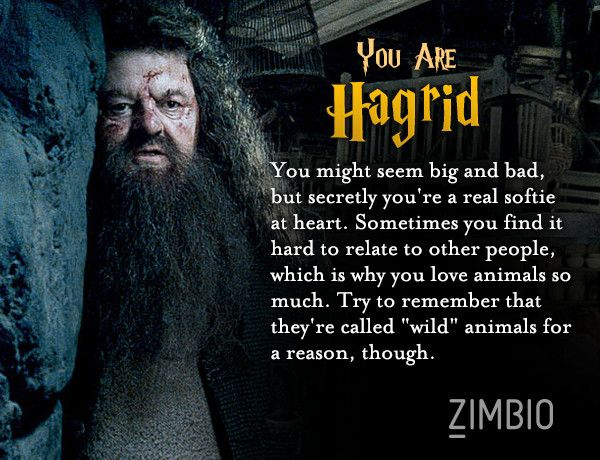 I took Zimbio's 'Harry Potter' personality quiz and apparenty I'm Hagrid... Who are you?