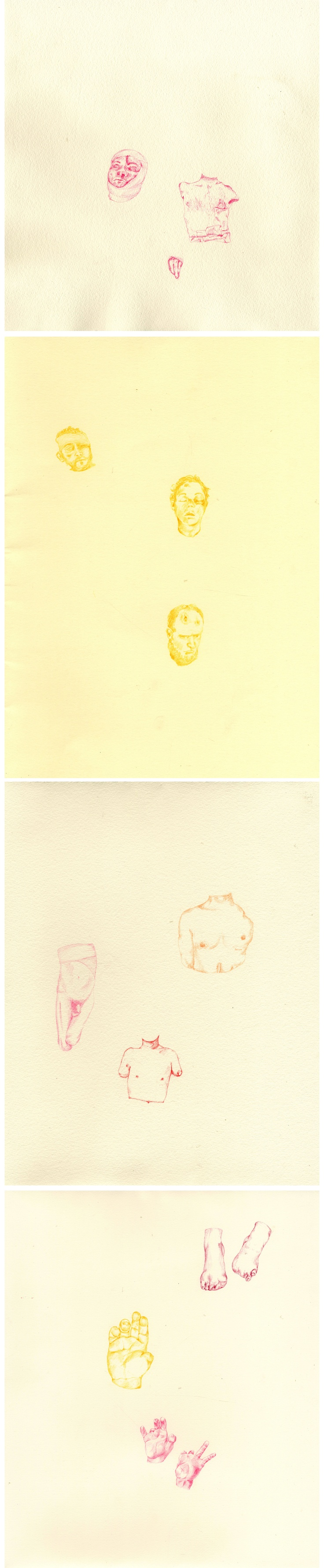 War Hero I, II, III, IV Colouring pencil on paper, Eleanor Phillips, 2013 http://eleanorphillips.wordpress.com/